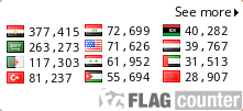 flag-counter